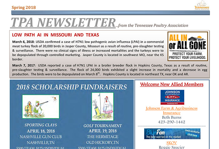 Newsletter Cover Image